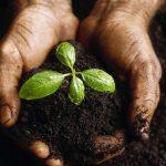 God helps us grow